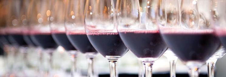 Wine-Education