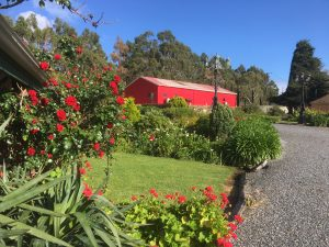 parawa estate red shed